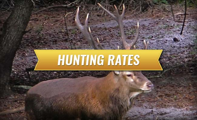 Cypress Ridge Hunting Preserve Hunting Rates