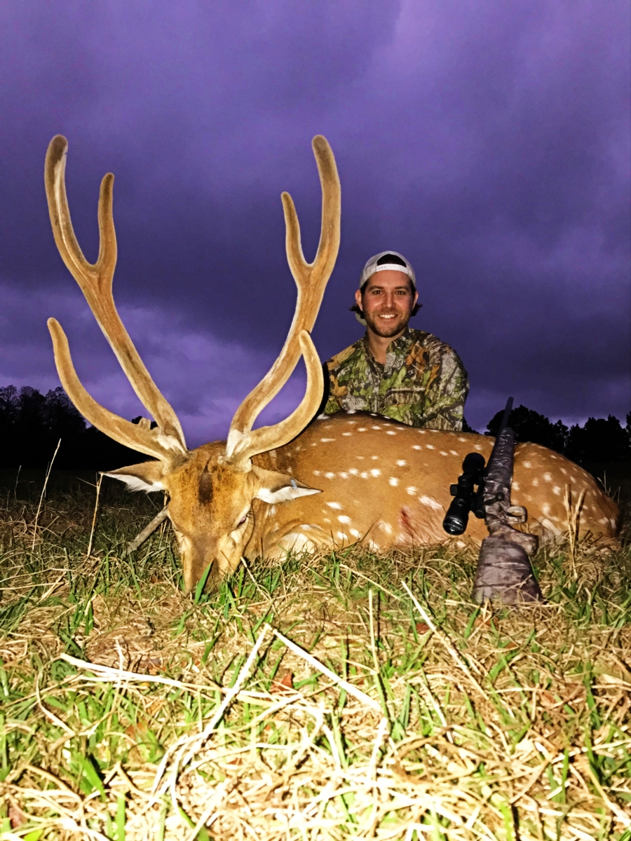 Axis Deer Hunts in Florida